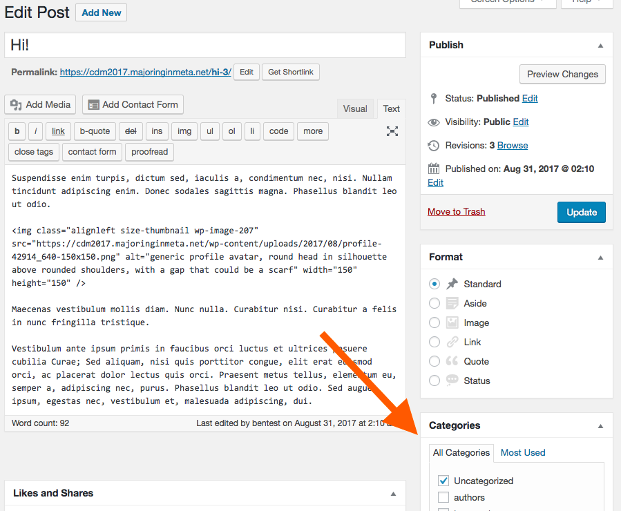 screenshot of wordpress post editing window, with an arrow pointing to the categories dialog box.